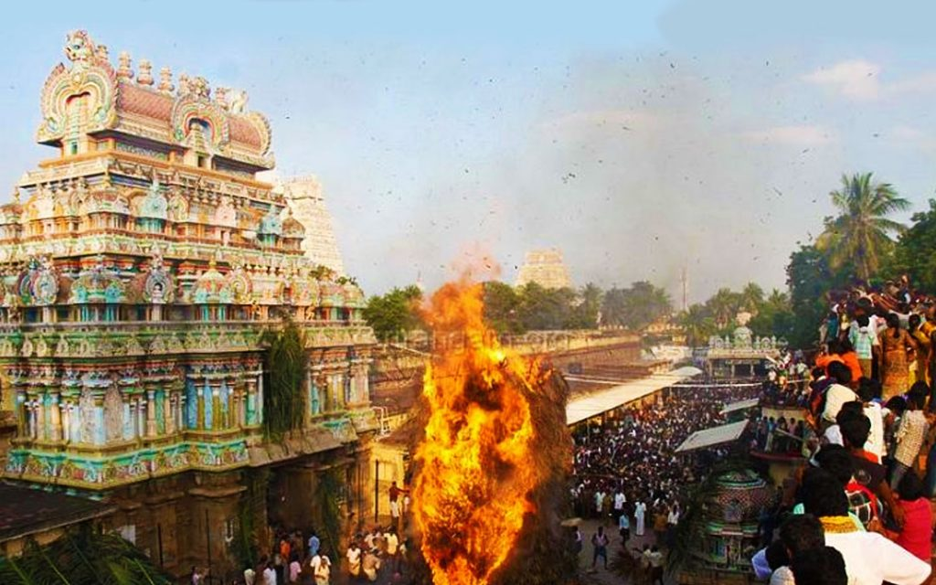 Chokka Panai in Srirangam Sri Ranganathaswamy temple during Thirukarthigai