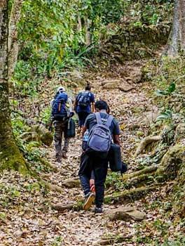 trekking-in-vattakanal