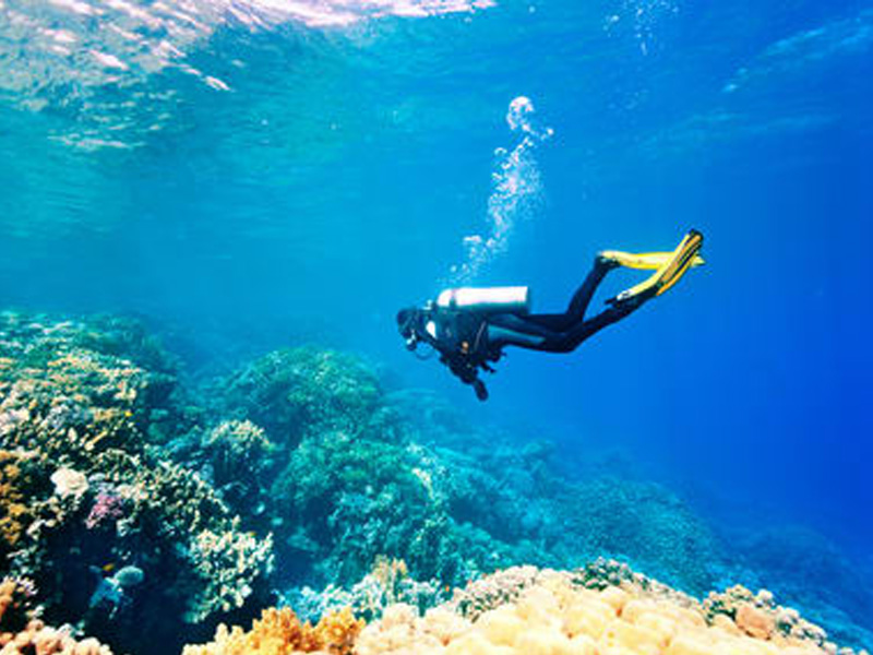 Scuba Diving - Chennai