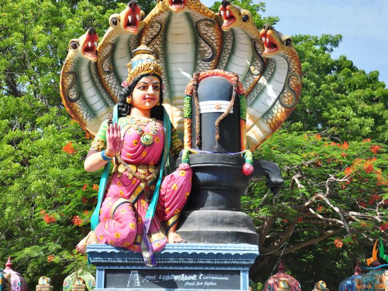 Pettai Amman Temple - Coimbatore