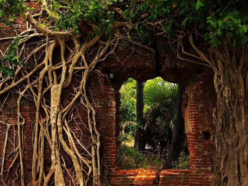 Tourist Attractions in kanchipuram