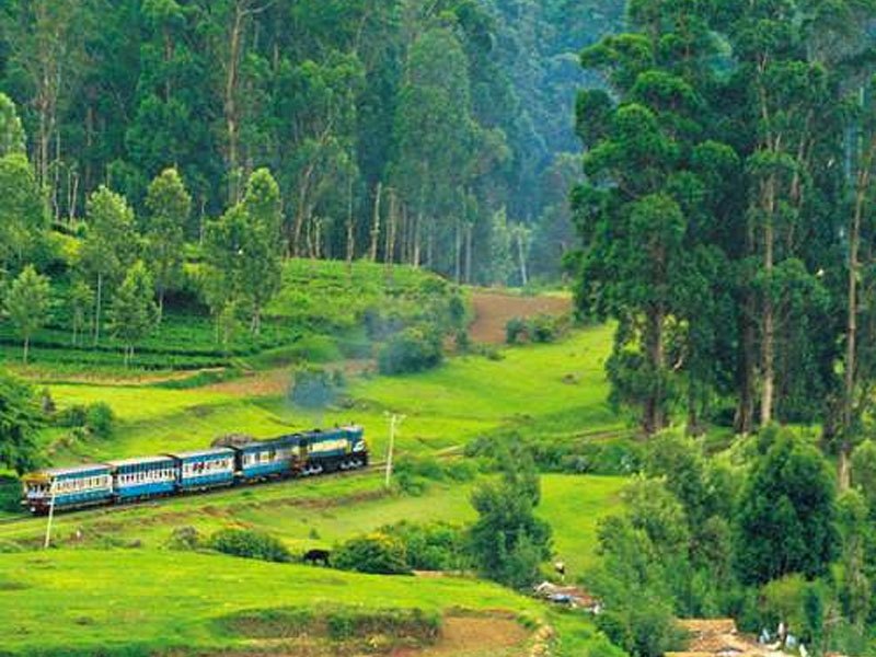 ooty - Awesome Tamil Nadu Tour Package - Taminadu Tourism Travel